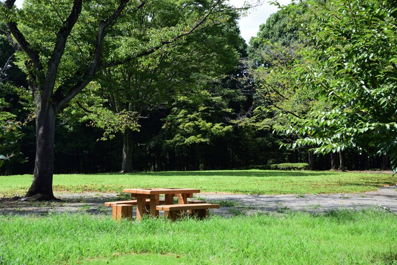 254903_21-01hagagunichikaimachi