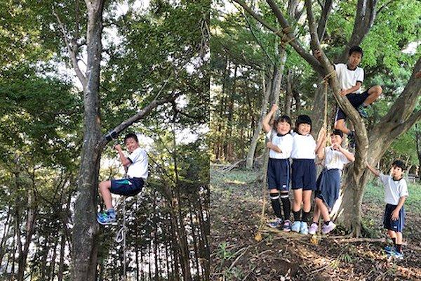 森の中で遊ぶ子どもたち